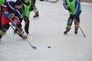 Турнир по дворовому хоккею с шайбой посвященный Дню защитника Отечества
